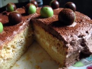 3 milk cake final3